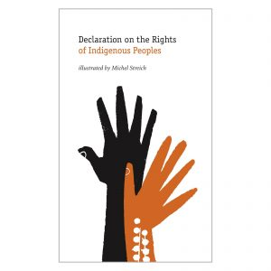 Cover Declaration on the Rights of Indigenous Peoples