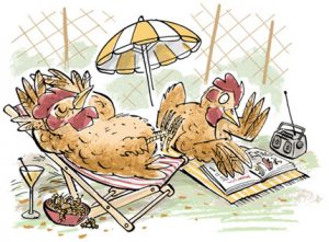 Illustration of two chickens on holidays, sunning themselves ina deckchair, reading magazines and drinking cocktails - humorous line drawing by Michel Streich