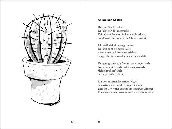illustration cactus in flower pot